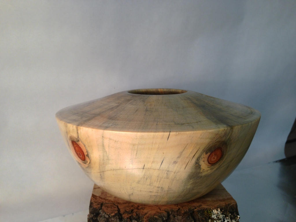 Norfolk Island Pine Bowl 1